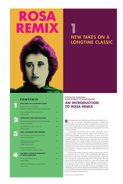 Rosa Remix published by the Rosa Luxemborg Institute Stiftung